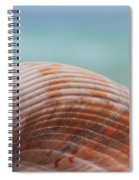Cockle Shell Spiral Notebook