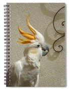 Cocky Too Spiral Notebook