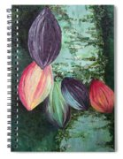 Cocoa Pods Spiral Notebook