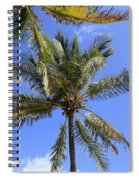 Cocoanut Palm Trees Sky Background Spiral Notebook