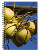 Coconut 1 Spiral Notebook