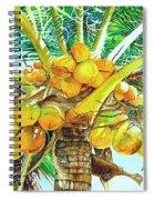 Coconut Series II Spiral Notebook