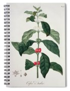 Coffea Arabica From Phytographie Spiral Notebook