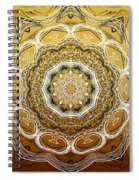 Coffee Flowers 2 Ornate Medallion Calypso Spiral Notebook