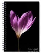 Colchicum #3 Spiral Notebook