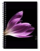 Colchicum #4 Spiral Notebook