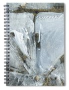 Cold Calculation Spiral Notebook