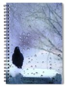 Cold Crow Spiral Notebook