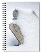 Cold Dead Spiral Notebook