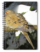 Cold Dove Spiral Notebook
