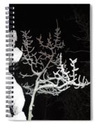 Cold Hearted Spiral Notebook