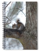 Cold January 2014 Spiral Notebook