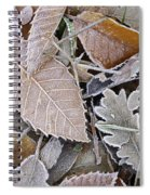 Cold Leaves Spiral Notebook