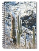 Cold Saguaros Spiral Notebook