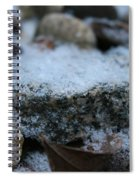 Cold Stone Spiral Notebook