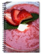 Cold Strawberry Rhubarb Soup In Ice Bowl Spiral Notebook