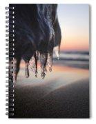 Cold Sunset Spiral Notebook