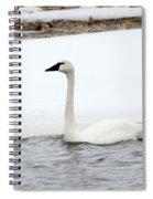 Cold Swim Spiral Notebook