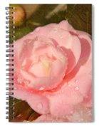 Cold Swirled Camellia Spiral Notebook