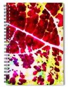 Coleus #2 Spiral Notebook