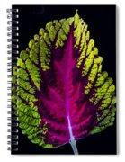 Coleus Leaf Spiral Notebook