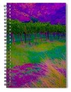 Colibri Acid 3 Spiral Notebook