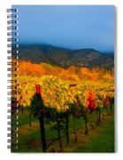 Colibri Morning Spiral Notebook
