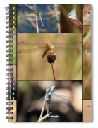 Collage Marsh Life Spiral Notebook