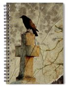 Collage Of Crow Spiral Notebook