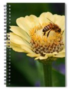 Collecting Nectar Spiral Notebook