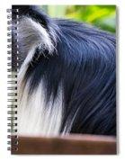 Colobus Monkey Spiral Notebook