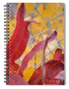 Color Containment  Spiral Notebook