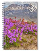 Color From Chaos - Mount St. Helens Spiral Notebook
