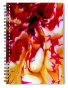 Color In A Carnation Spiral Notebook