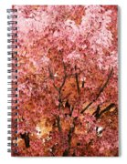 Color In The Tree 03 Spiral Notebook