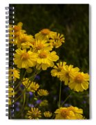 Color Me Yellow  Spiral Notebook