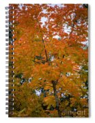 Color Of Fall Spiral Notebook