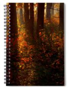Color On The Forest Floor Spiral Notebook