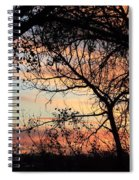 Color Through The Trees Spiral Notebook