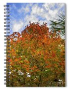 Color To The Sky Spiral Notebook