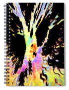 Color Trip Spiral Notebook