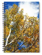 Colorado Aspens And Blue Skies Spiral Notebook