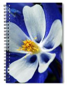 Colorado Columbine Spiral Notebook