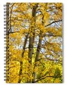 Colorado Fall Aspens 2 Spiral Notebook