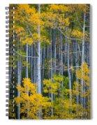Colorado Fall Color Spiral Notebook