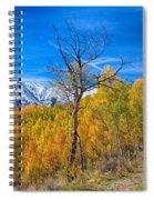 Colorado Fall Foliage Back Country View Spiral Notebook