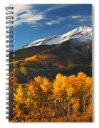 Colorado Gold Spiral Notebook