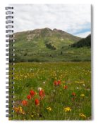 Colorado Meadow And Mountain Landscape Spiral Notebook
