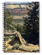 Colorado Plateau Spiral Notebook