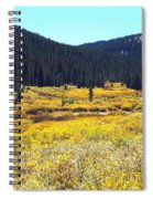Colorado River Valley In Fall Spiral Notebook